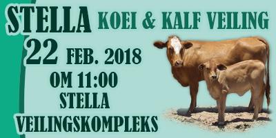 STELLA KOEI & KALF VEILING