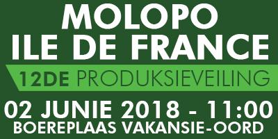 MOLOPO ILE DE FRANCE